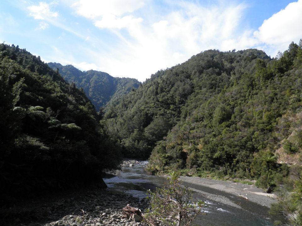 Pakihi Valley