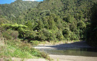 Pakihi River