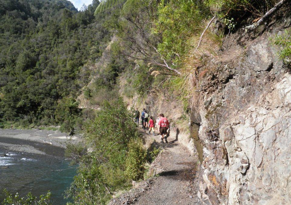 Walk the Pakihi Track